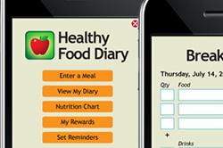 Interface design for food diary web app
